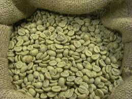 coffee_13_14
