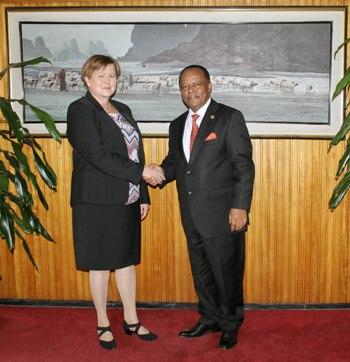 Ambassador of Finland